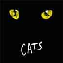 CATS (2CD) (IN NEW YORK)